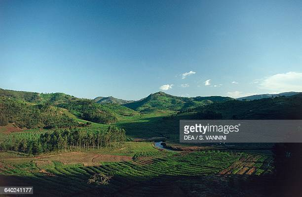 Agricultural landscape between Ruhengeri and Kigali Rwanda