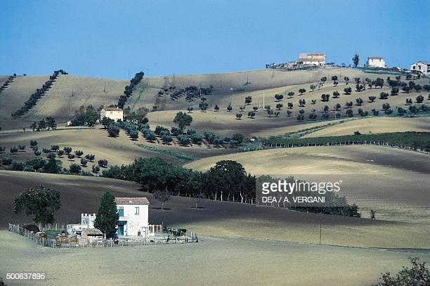 Agricultural landscape near Montenero di Bisaccia Molise Italy