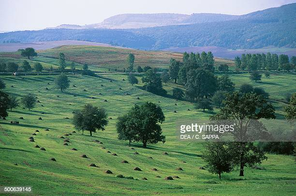 Agricultural landscape near Sighisoara Romania