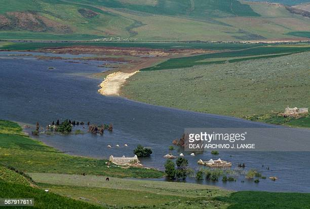 Agricultural landscape near Souk Arras Algeria