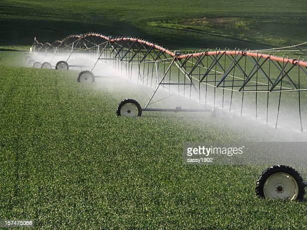 Arroseur automatique-Agriculture système