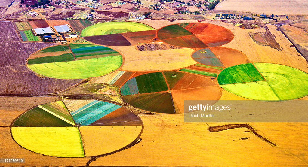 Agriculture Art