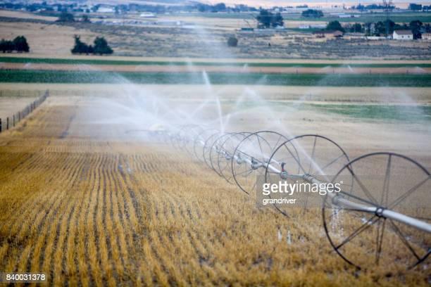 Agriculture: Crop Irrigation