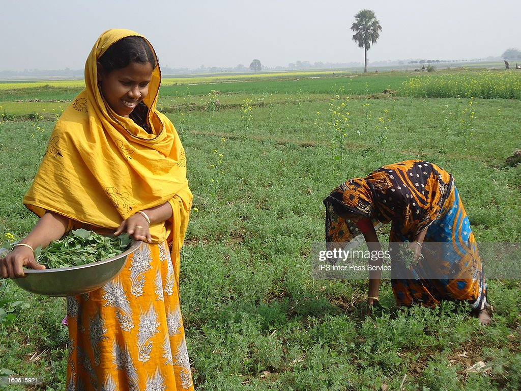 CONTENT] Agriculture currently provides a livelihood for roughly 1.3 billion smallholder farmers and landless workers, of which nearly half (close to 560 million) are women. http://www.ipsnews.net/2012/02/rural-women-are-leading-the-way-will-the-world-follow-part-1/
