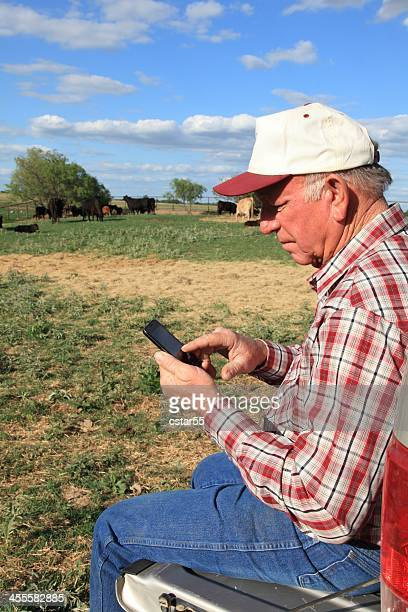 Agriculture: Farmer or rancher in field with Smart Phone, Cattle