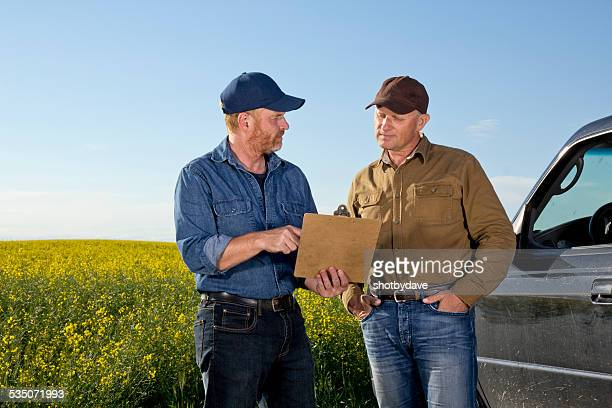 Agriculture Farmers in Colllaboration and Communication at a Canola Farm