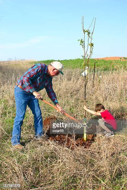 Landwirtschaft: Mann und Junge Pflanzen Bäumen für-Serie