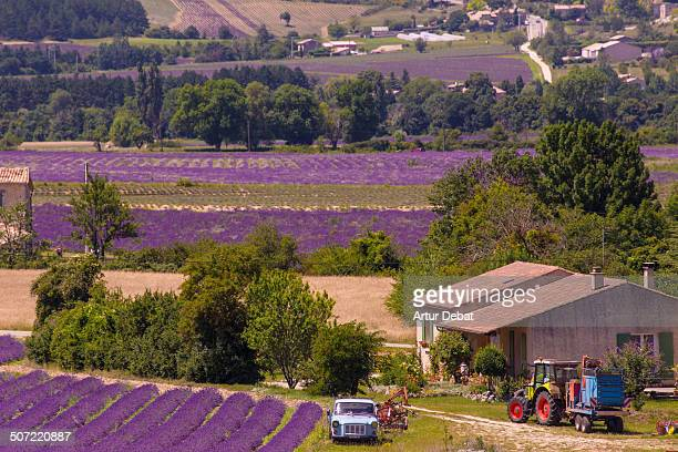 Agriculture technology with tractors and machines in the lavender fields landscape with farm of the Provence in the France