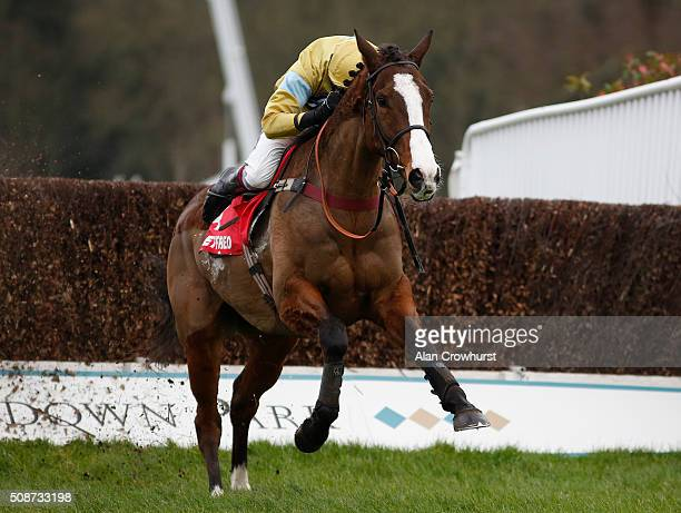 Aidan Coleman riding Arthur's Oak clear the last to win The Betfred 'Treble The Odds On Lucky 15's' Handicap Steeple Chase at Sandown racecourse on...
