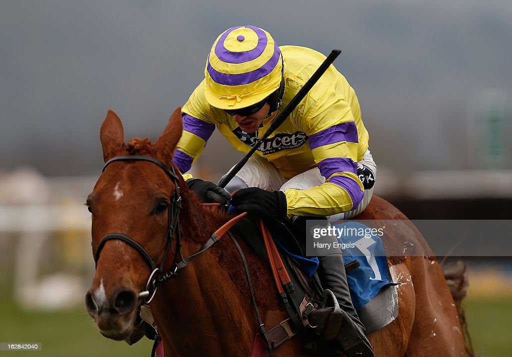 Aidan Coleman riding Jupiter Rex in action during 'The C & D South West 25th Anniversary Novices' Handicap Hurdle Race' at Taunton Racecourse on February 28, 2013 in Taunton, England.