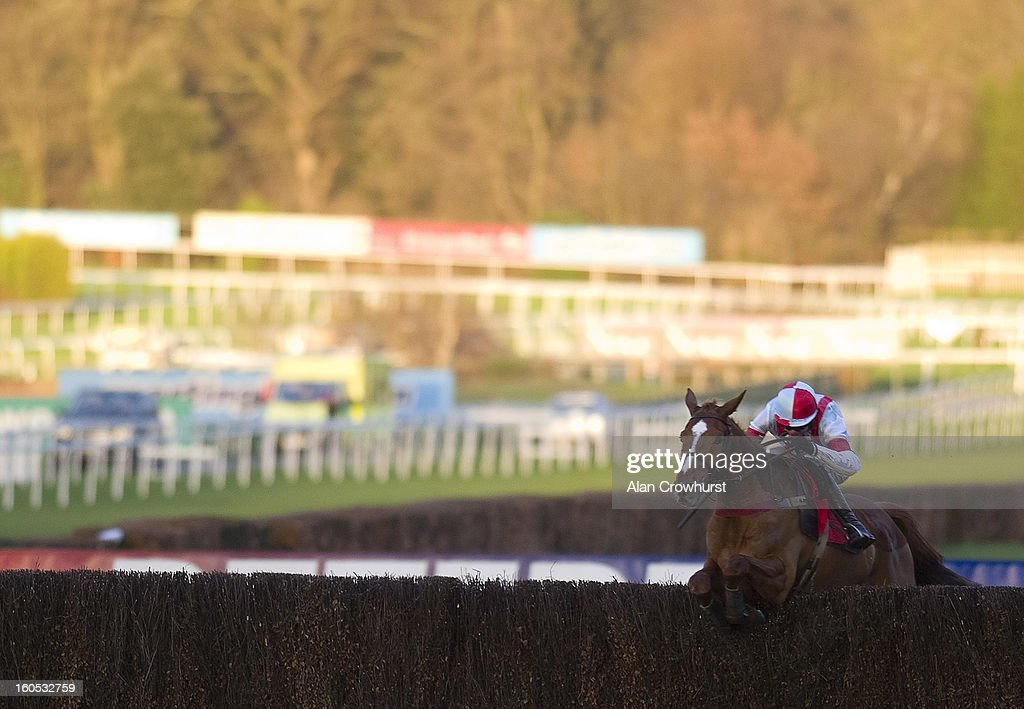 Aidan Coleman riding Kapga De Cerisy clear the last to win The Betfred 'Double Delight' Novices' Handicap Steeple Chase at Sandown racecourse on February 02, 2013 in Esher, England.