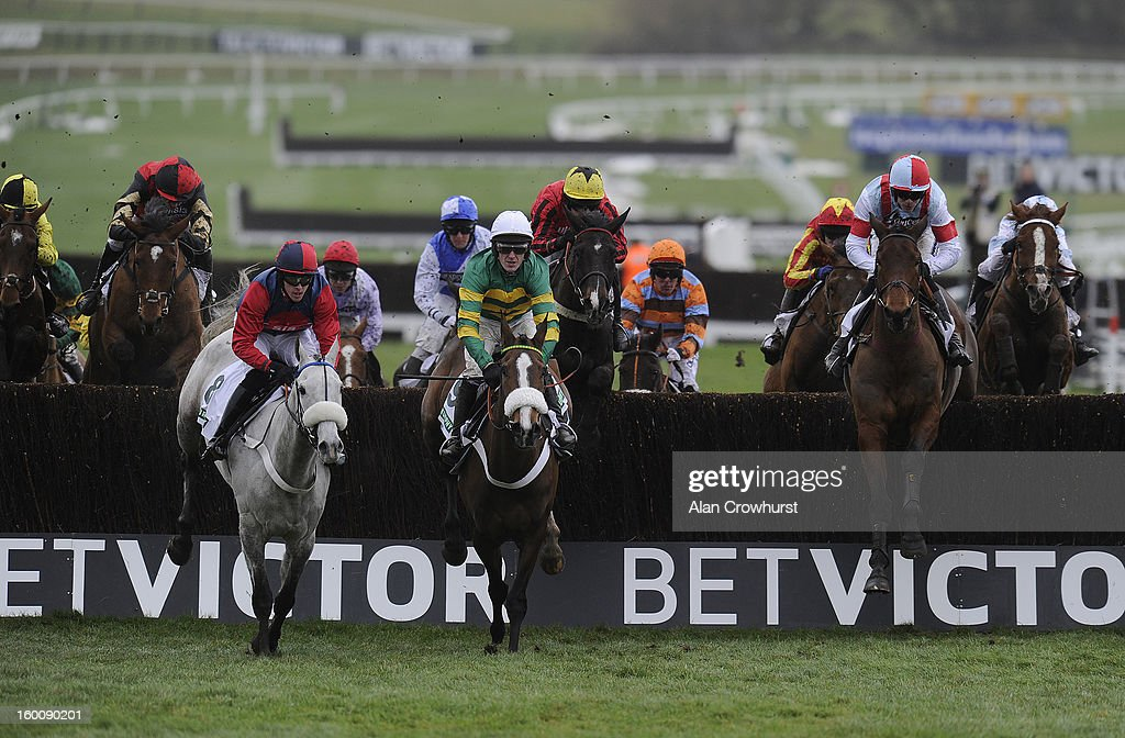 Aidan Coleman riding Katenko (2nd R) on their way to winning The Murphy Group Steeple Chase at Cheltenham racecourse on January 26, 2013 in Cheltenham, England.