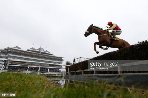 Aidan Coleman riding Native River clear the water jump on their way to winning The Betfair Denman Steeple Chase at Newbury Racecourse on February 11...