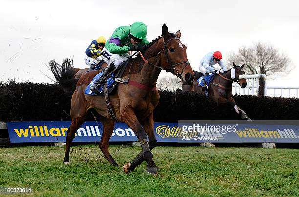 Aidan Coleman riding Rydalis dead heat with Micheal Nolan riding Milo Milan in The Perrott Properties Ltd Handicap Steeple Chase at Ludlow racecourse...