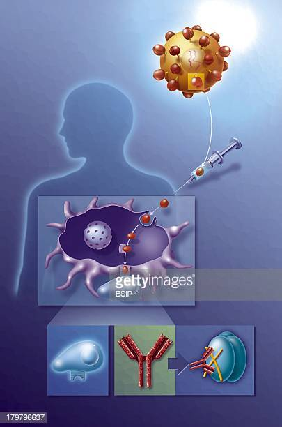 Aids Research Illustration Of The First Attempt To Find An Aids Vaccine By Injecting Gp120 Molecules Of The Virus Into The Human Organism...