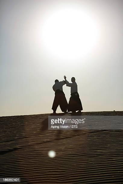 Aikido in desert