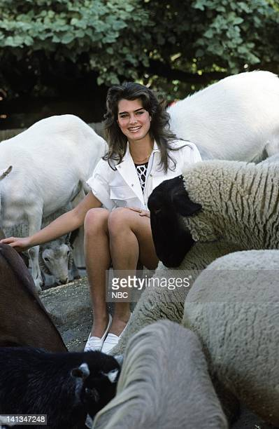 PEOPLE Air Date Pictured Actress Brooke Shields Photo by Ron Tom/NBCU Photo Bank