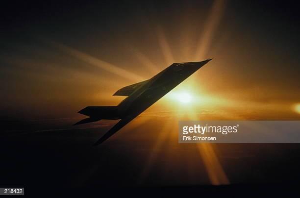 U.S. Air Force Lockheed Martin F-117 Stealth Fighter