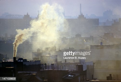 air pollution in new york city essay When i became a south asia correspondent for the new york times three years ago the city's air is more than twice as polluted as beijing's mostly out of china, describing the horrors of air pollution.