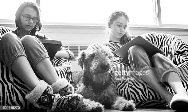 Airdale terrier Cachorro junto de dois girlx adolescente