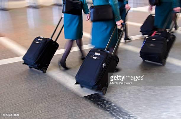 Airline stewardess in airport