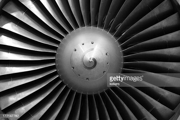 Airliner engine fan