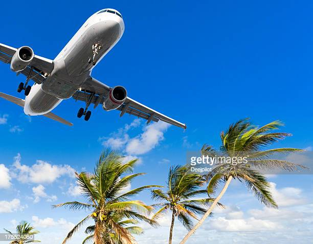 Airliner Landing Over Palm Trees