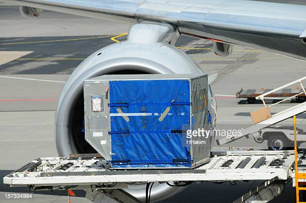 Airlines Industry - Portable Conveyer Belt