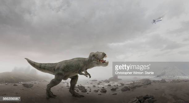 Airplane flying over dinosaur in rocky field
