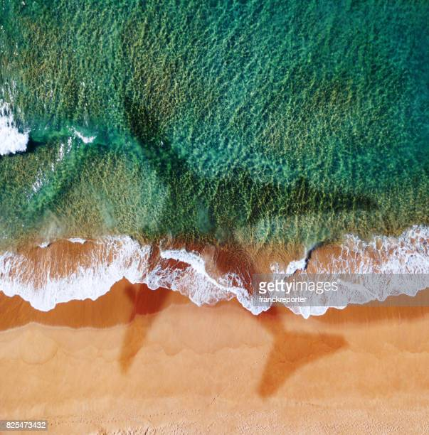 avion sur la plage en Australie