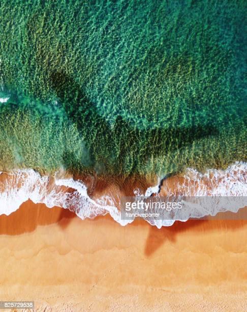 airplane over the beach in australia