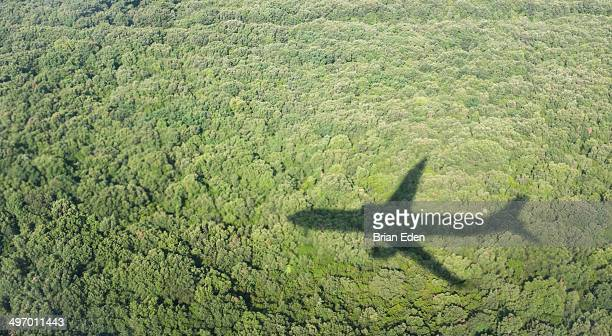 Airplane Shadow flying over a forest