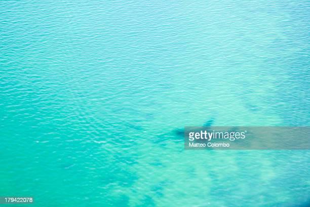 Airplane shadow over tropical sea