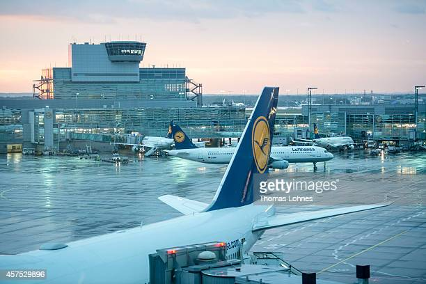 Airplanes of the German airline Lufthansa stand at Frankfurt Airport on October 09 2014 in Frankfurt Germany Vereinigung Cockpit the labor union that...