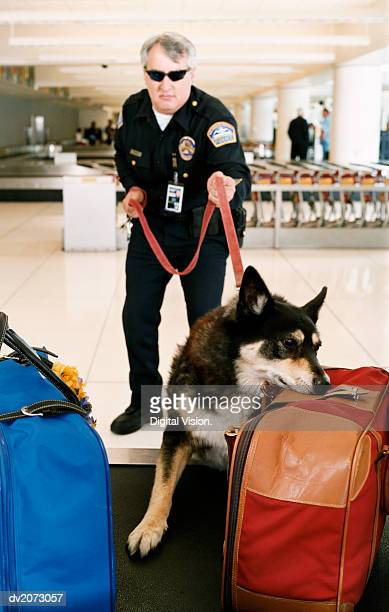 Airport Security Guard With a Sniffer Dog