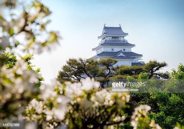 Aizuwakamatsu castle in Spring