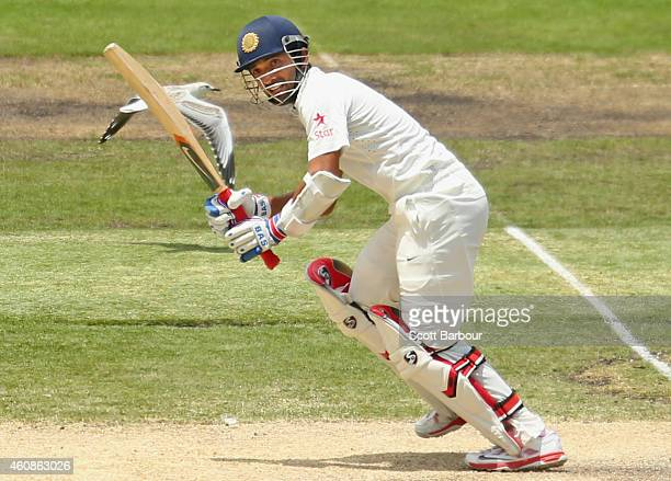 Ajinkya Rahane of India bats as a seagull flies plast him during day three of the Third Test match between Australia and India at Melbourne Cricket...