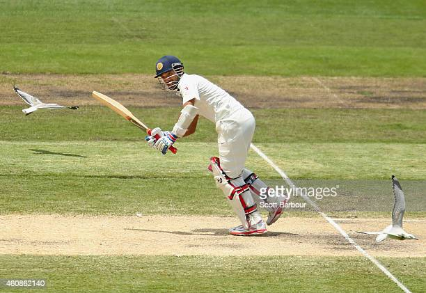 Ajinkya Rahane of India bats as two seagulls fly past him during day three of the Third Test match between Australia and India at Melbourne Cricket...