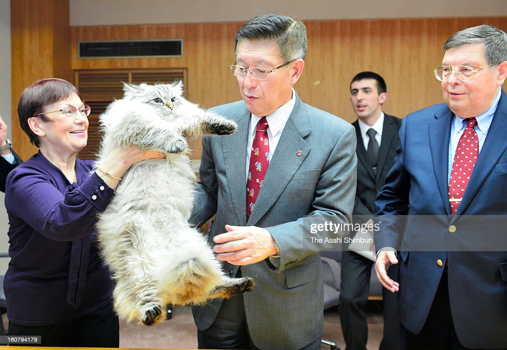 Akita Prefecture governor Norihisa Satake receives a Siberian cat as a return gift from Russian President Vladimir Putin at Akita Prefecture headquarters on February 5, 2013 in Akita, Japan. Satake gave an Akita dog to Putin in July 2012 as appreciation of Russia's support in the Great East Japan Earthquake.