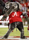 Alabama Crimson Tide mascot Big Al cheers on the field before the game against the South Carolina Gamecocks at BryantDenny Stadium in Tuscaloosa...
