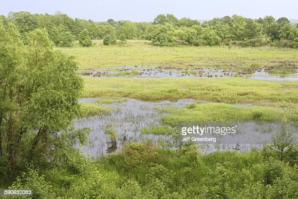 Alabama Eufaula National Wildlife Refuge Chattahoochee River Wetland Upland Habitat