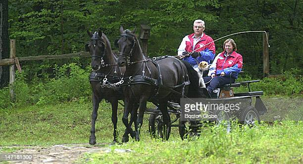 Alan and Maureen Aulson and their dog Gator drive two Morgan horses at Great Rock Farm