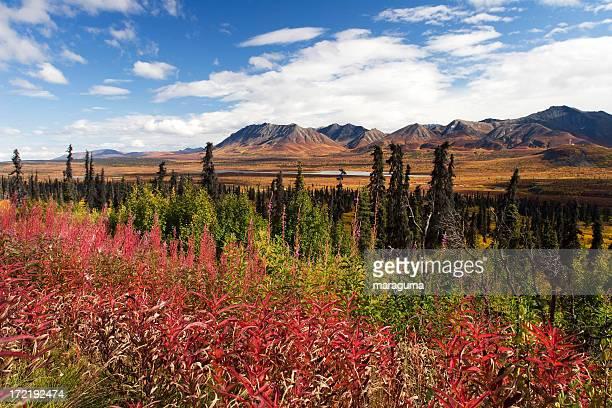 Alaska - Glenn Highway