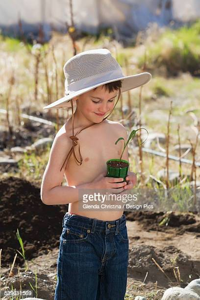 Alaska Native Boy With Corn Plant In Early Summer
