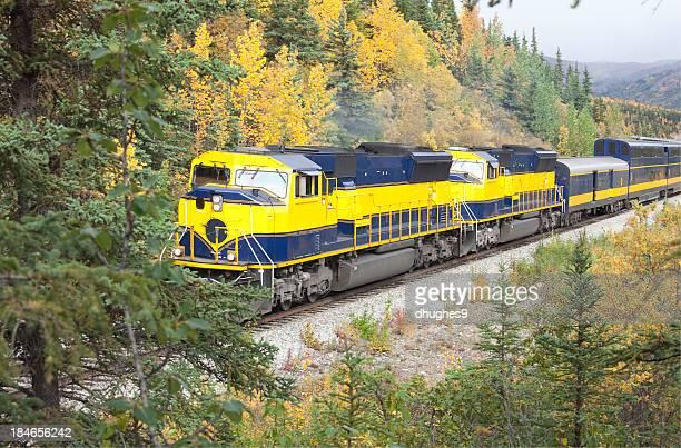 Alaska passenger train passing through Denali National Park