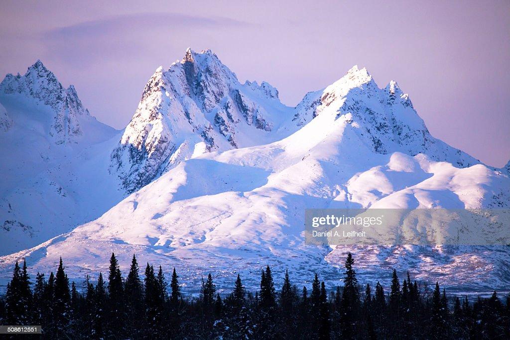 Alaska Range in Winter : Stock Photo