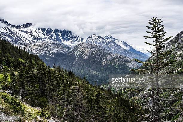 USA, Alaska, Skagway, Snow dusted mountains and evergreen trees