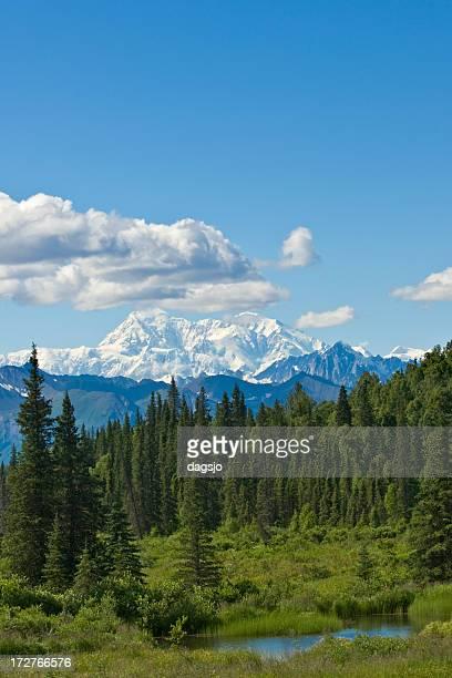 Alaskan scenery with McKinley
