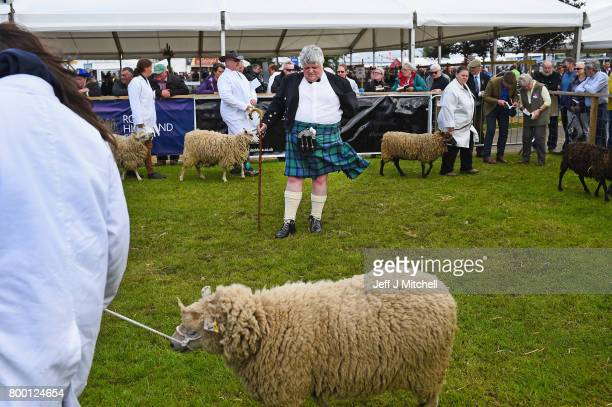 Alastair Wilson from Summerside Farm Newmains judges lambs at the Royal Highland show on June 23 2017 in Edinburgh Scotland The Royal Highland Show...