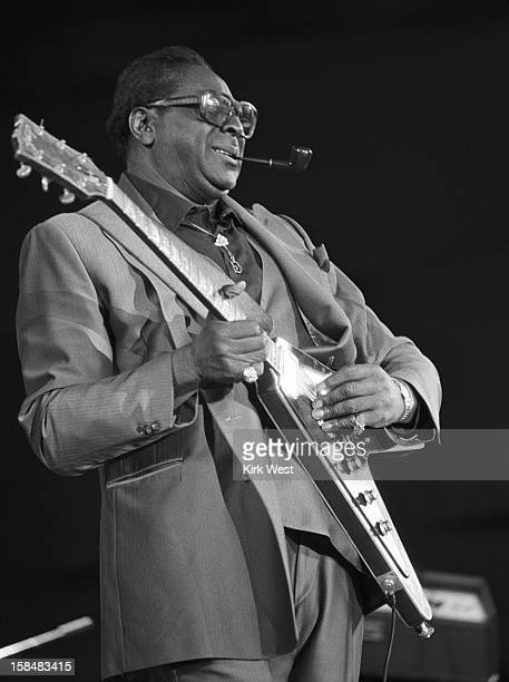 Albert King performs at the Chicago Blues Fest Chicago Illinois June 8 1986
